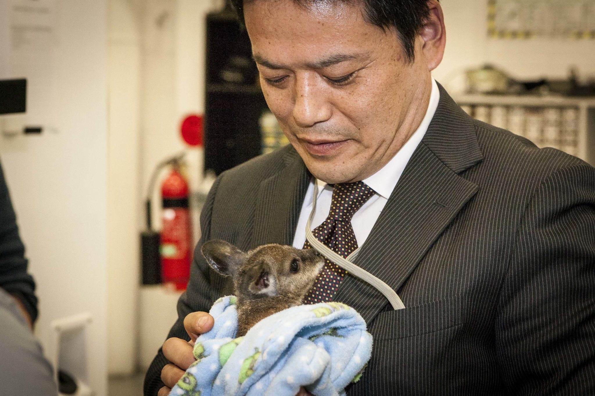 Mr Ishida with a wallaby.
